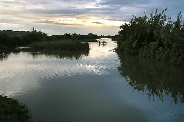 El río Vaca próximo a su desembocadura