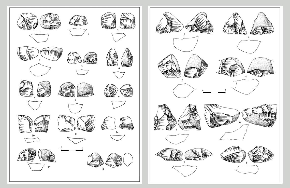 Diferentes tipos de nucleos. Dibujos Susana Alonso.